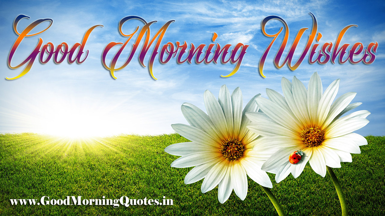 good-morning-sunday-images-for-whatsapp-goodmorningquotes.in